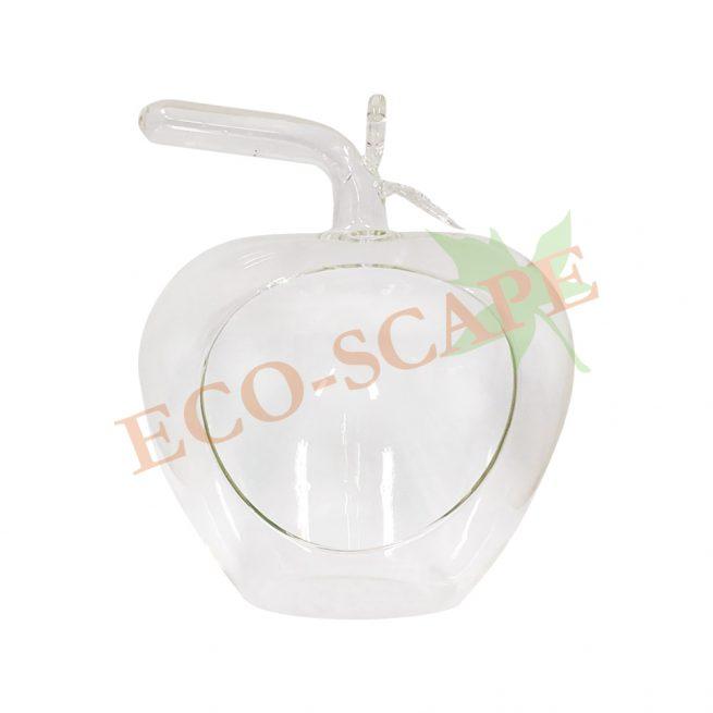 Apple Glass-0
