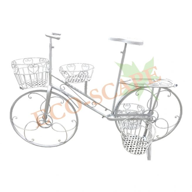 Bicycle (L)-0