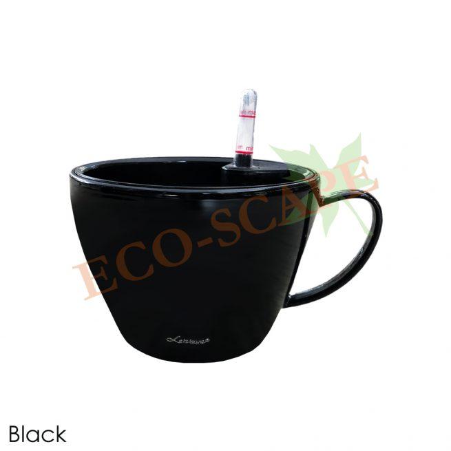 BZ02-03 Cup Series-1544