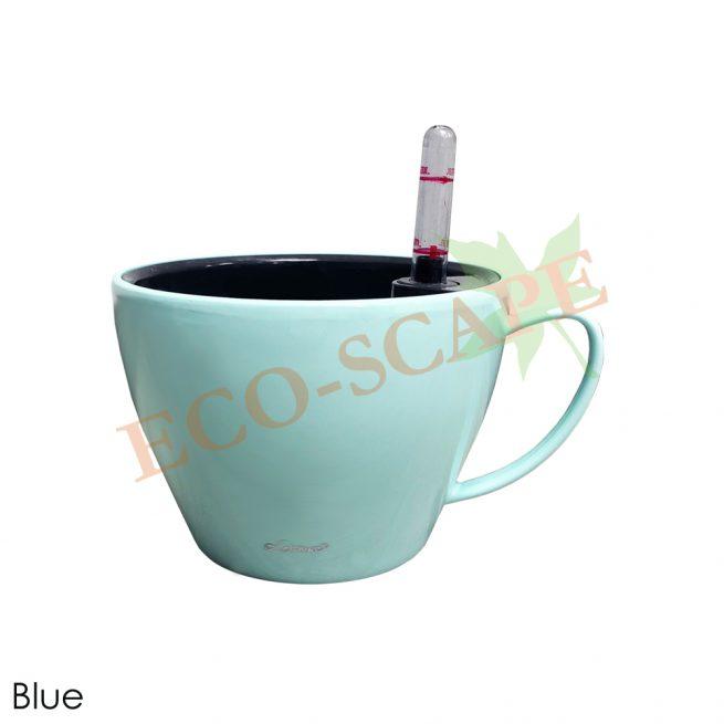 BZ02-03 Cup Series-0
