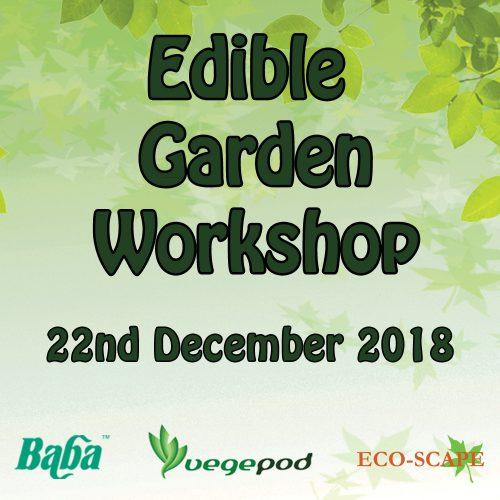 Edible Garden Workshop-0