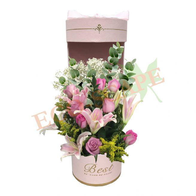 Floral Splendour-0