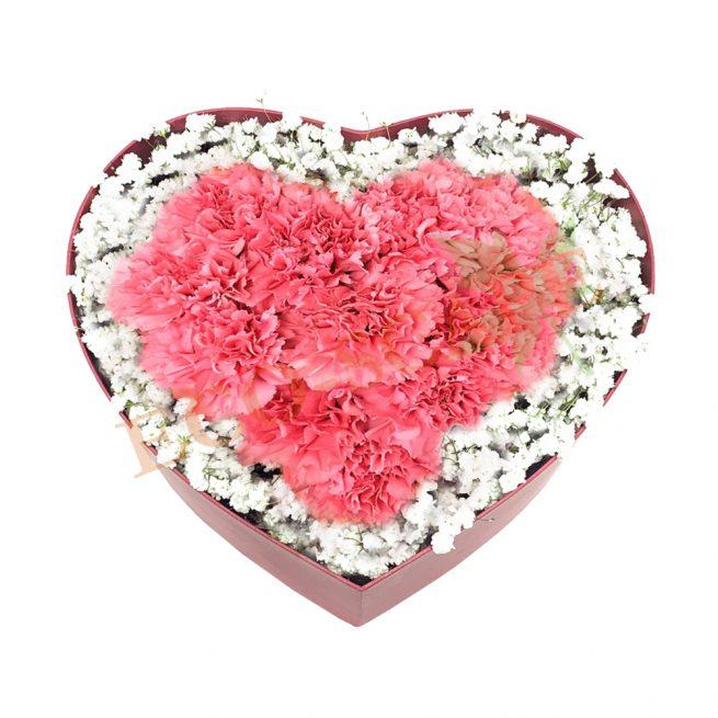 Treasured Love (Pink)-0