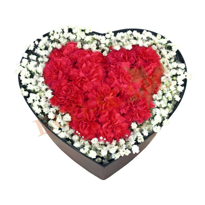 Treasured Love (Red)-0